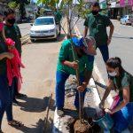 Prefeitura de Três Rios dá início à arborização urbana no município
