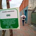 Secretaria de Meio Ambiente realiza plantio de mudas de árvores nas avenidas Nelson Viana e Castro Alves