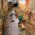 Prefeitura de Três Rios realiza limpeza do Córrego da Maçonaria e poda de árvores na Praça da Autonomia